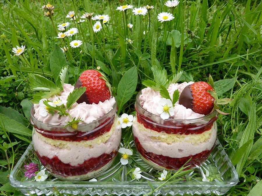 Dessert-mit-Wildkräutern
